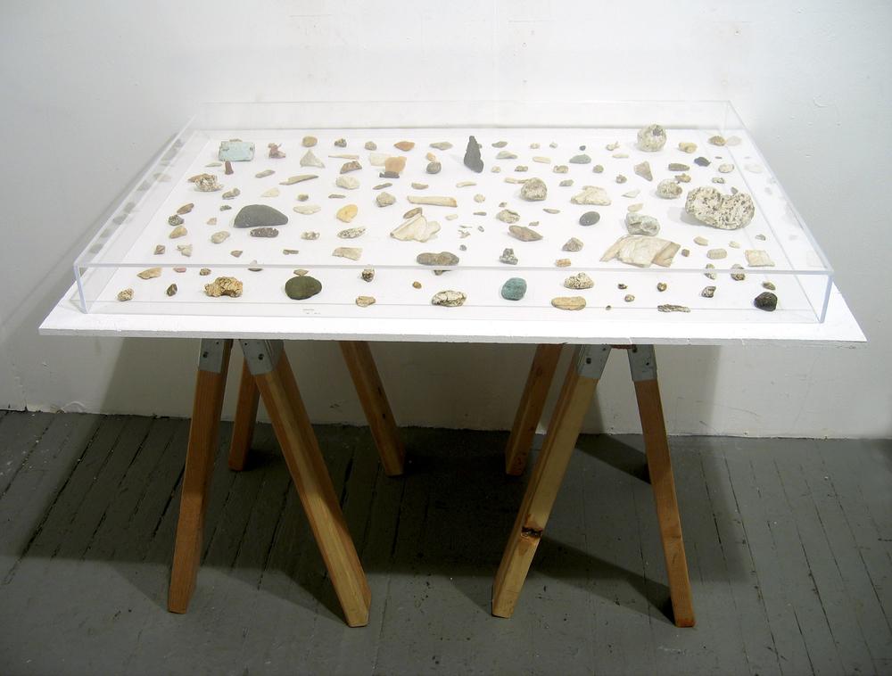 River Specimen Table.jpg