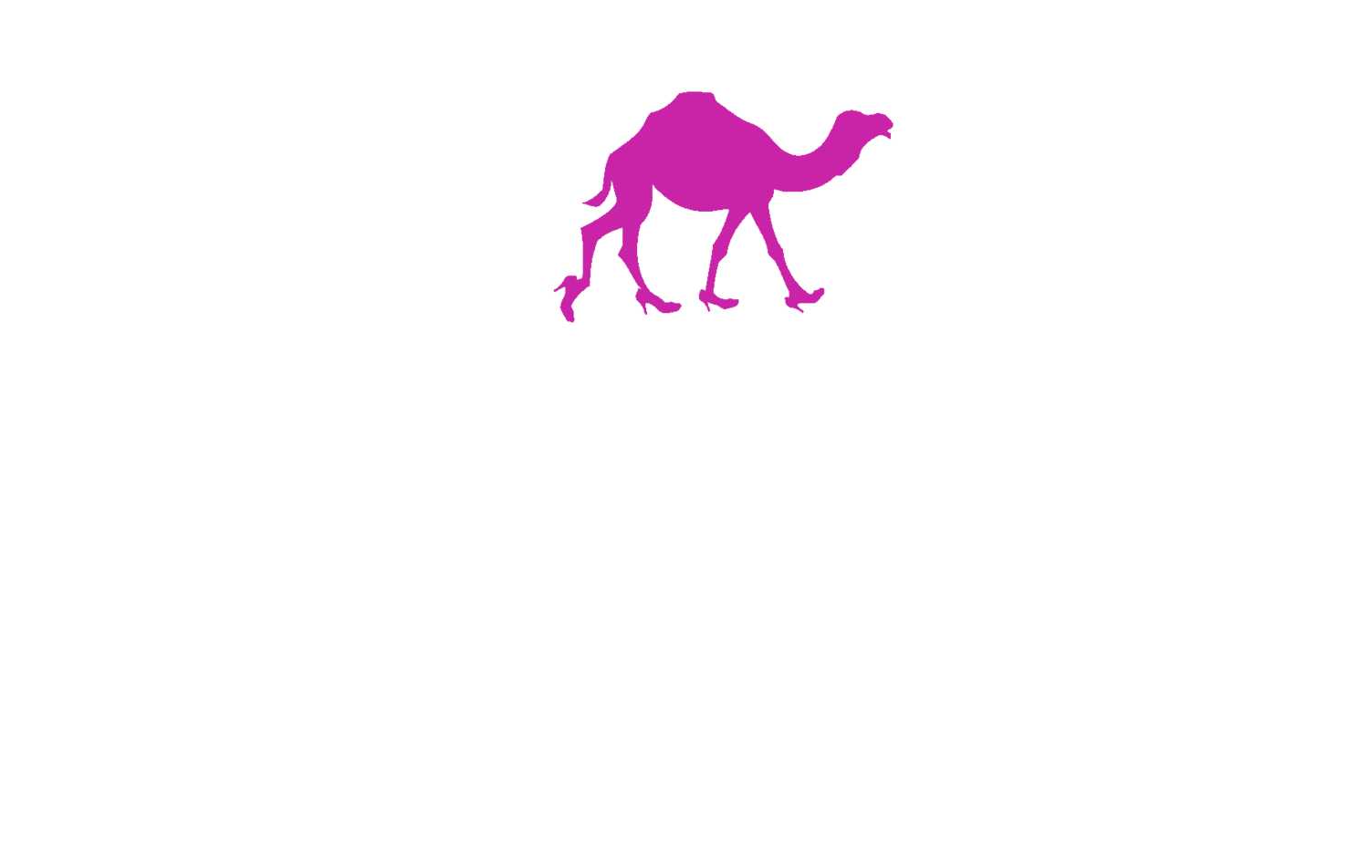 Camel Toe Lady Steppers