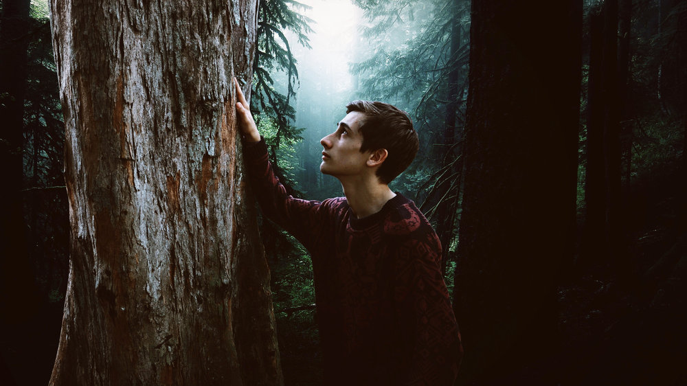 A young man feels a tree's energies in a green forest