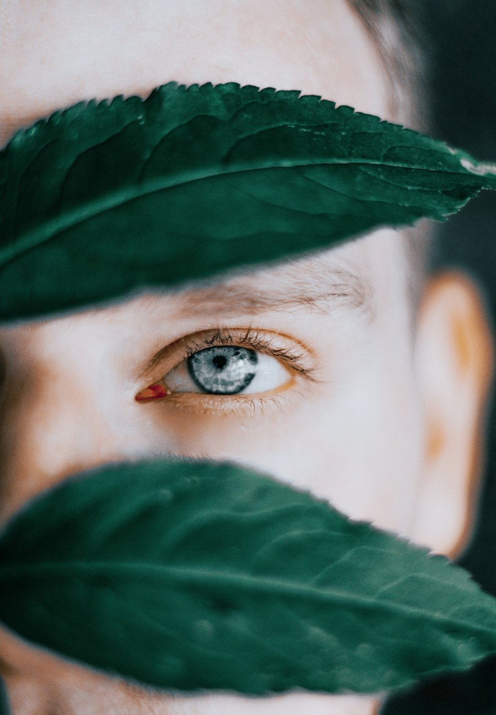 A person peers out from behind green leaves