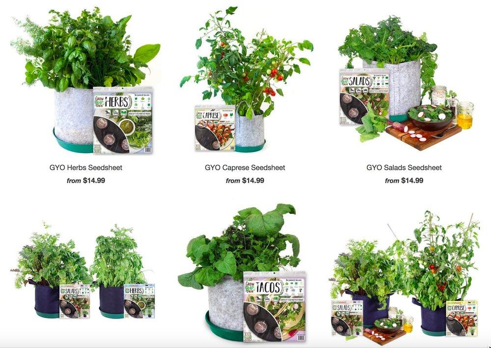 Seedsheet: Innovating Home Garden Technology