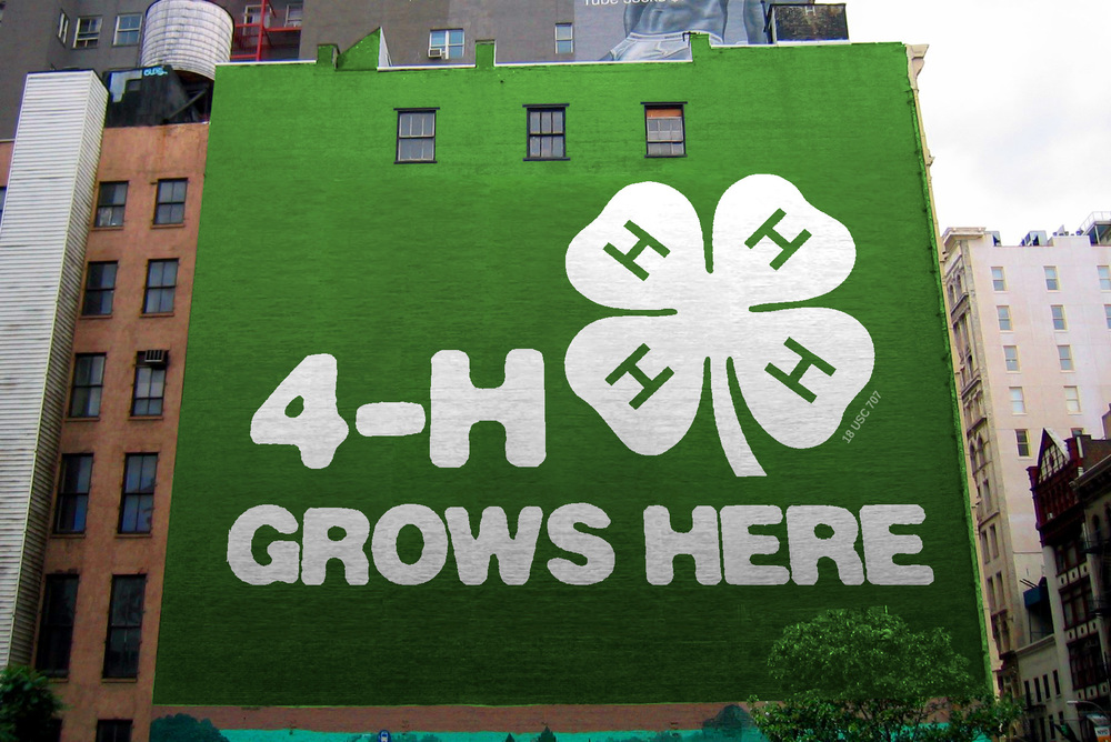 Large building side mural for 4H national.