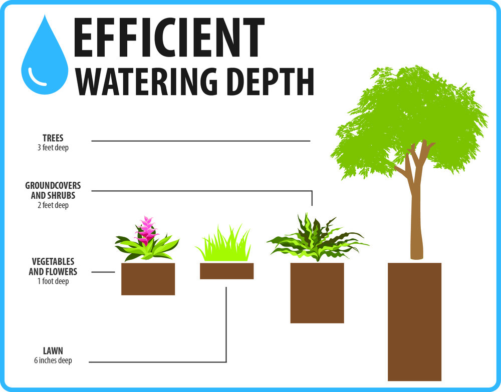 Efficient-Watering-Depth-pg24.jpg