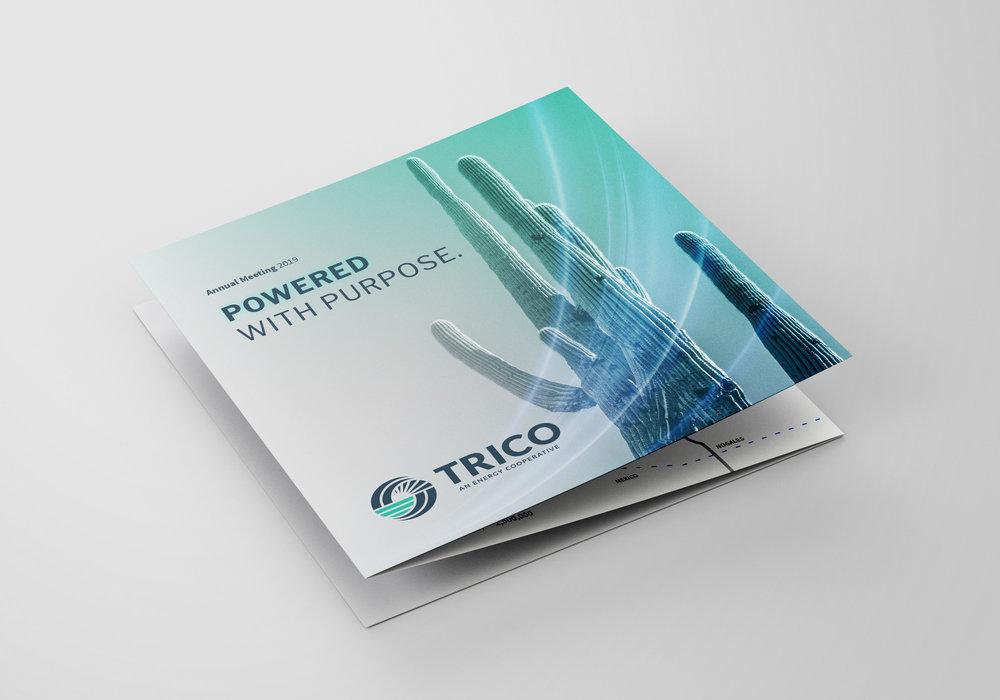 trico-leaflet-outer.jpg