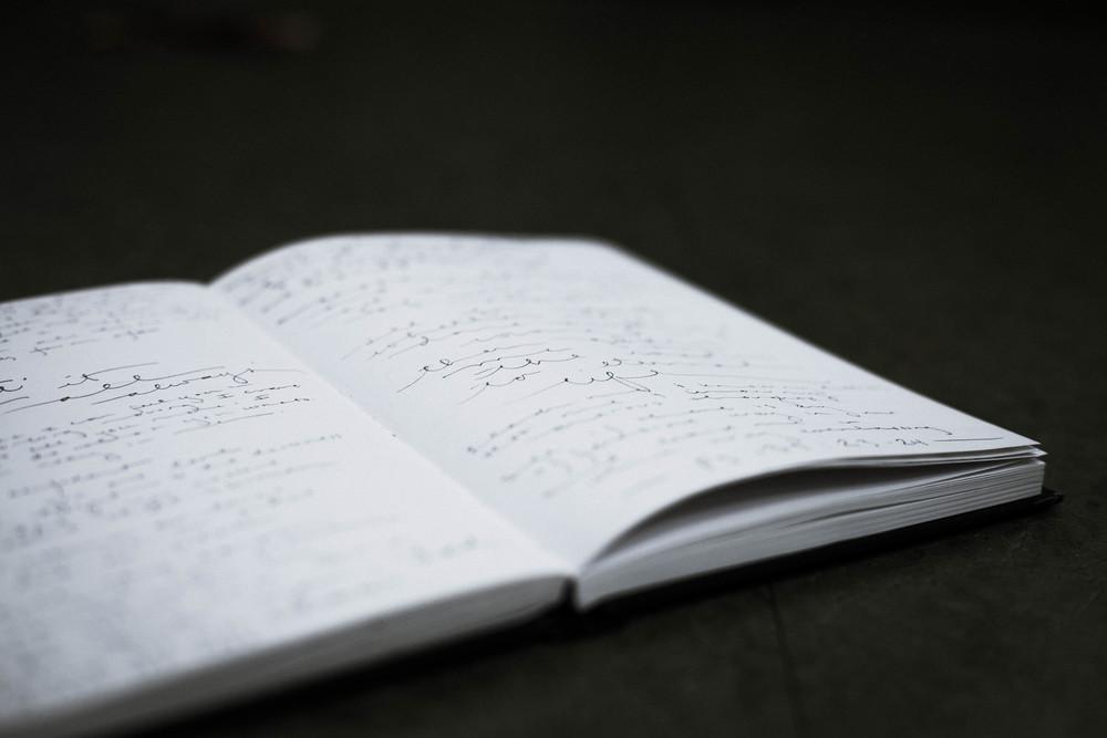 The Diary of B by Alexa Rivera