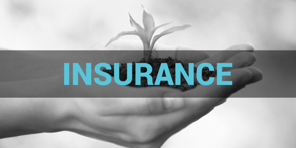 insurance home banner
