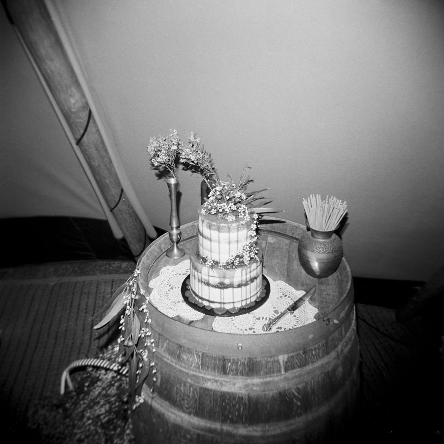 HOLGA-FILM-WEDDING-PHOTOGRAPHER_024.jpg