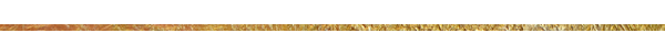 gold-bar-600x50.png