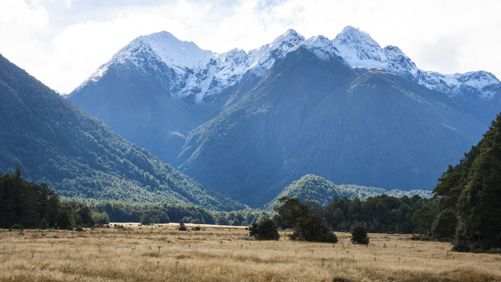 Eglinton Valley is a flat and expansive piece of land located in the Fiordland National Park. Photo: Sourced.