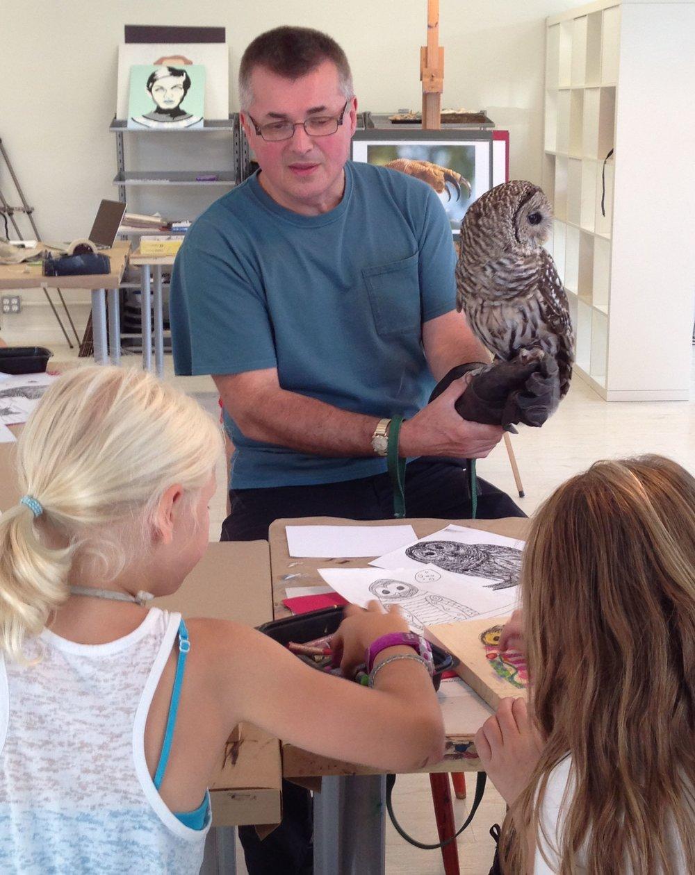 Owl Animal drawing.jpg