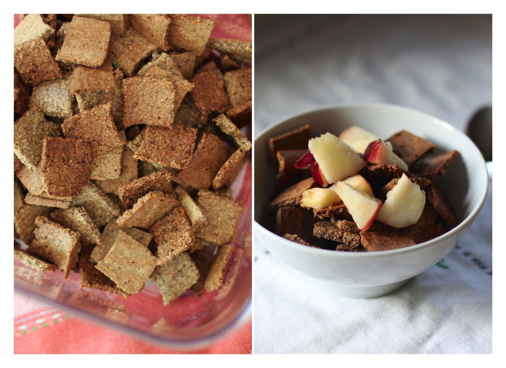 homemade grain free cereal