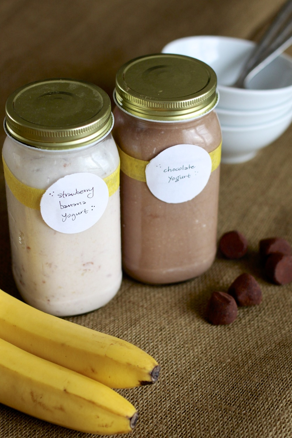 low carb/paleo kids: strawberry banana yogurt & chocolate yogurt