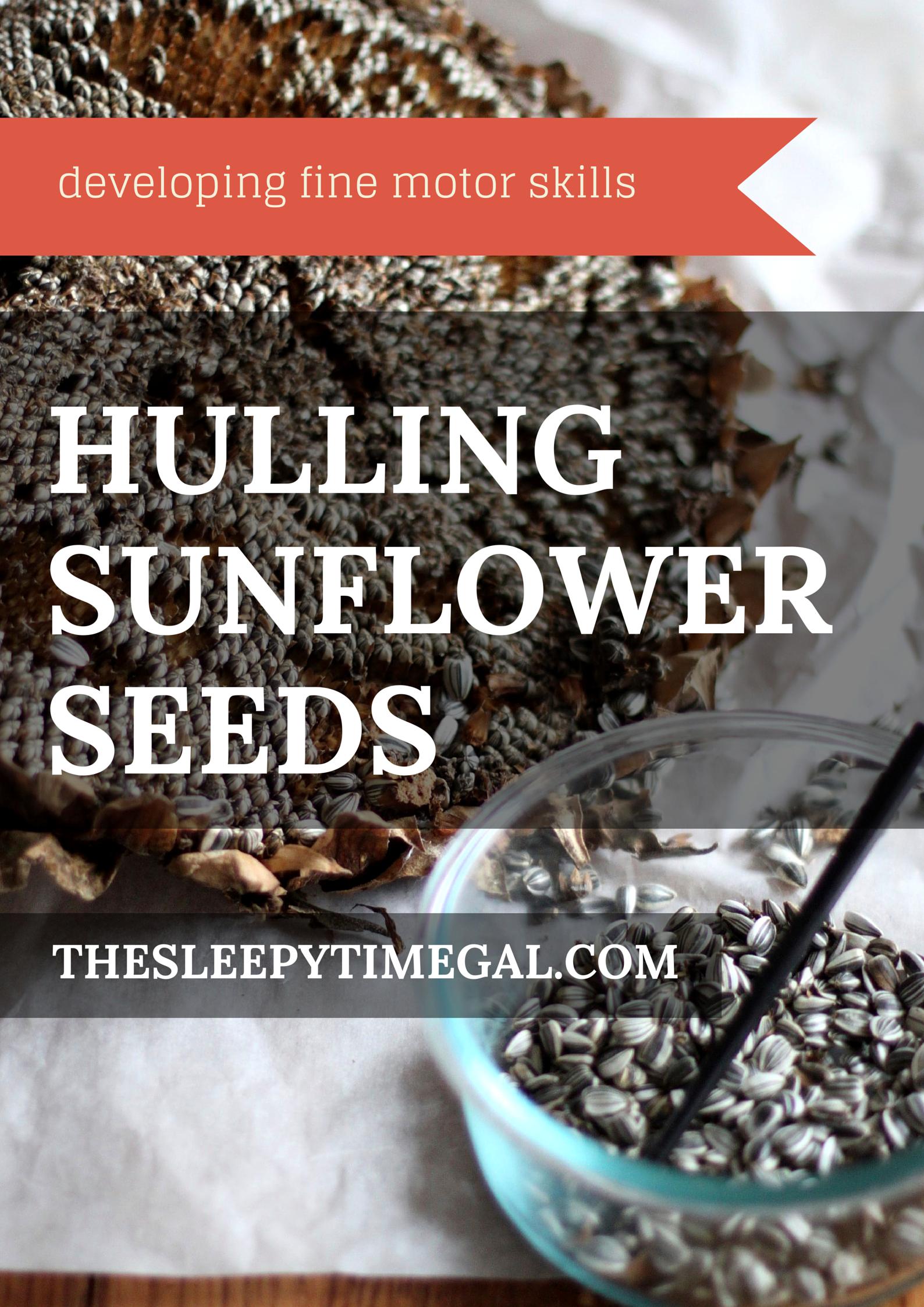 Hulling Sunflower Seeds (1)