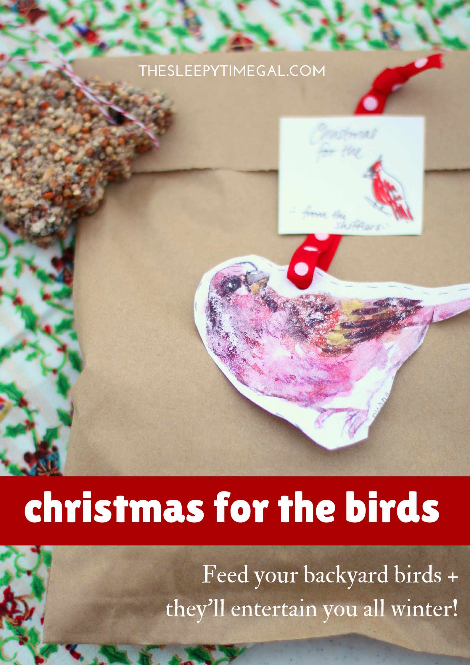 giving christmas to the birds (1)