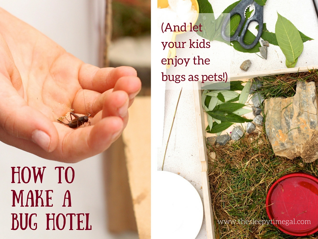 How to Make Bug Hotels (1)