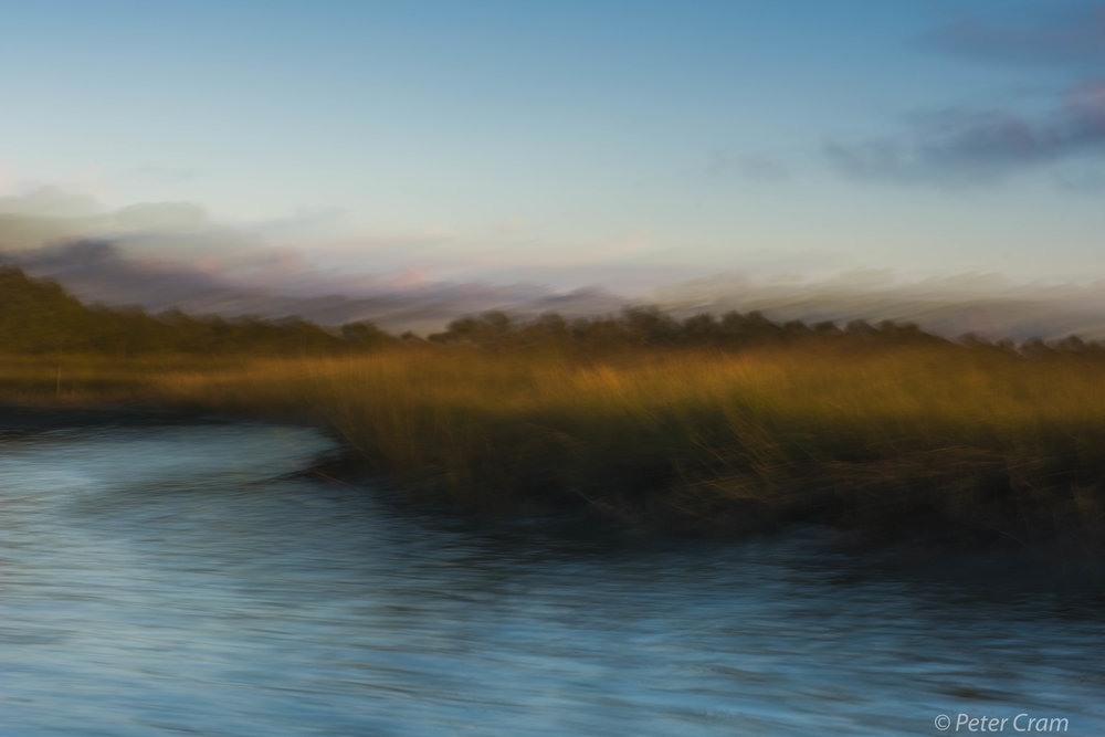 Early morning light in the salt marsh.   M111615-3-1064