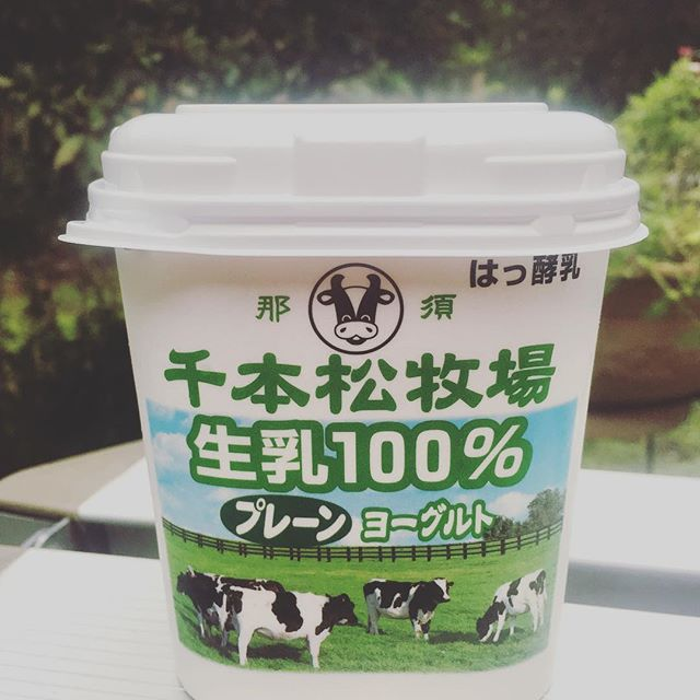 Yogurt made by 100% raw milk and sold in a regular grocery store.  Am envious of my folks in Nasu, Japan. #mypath_masako
