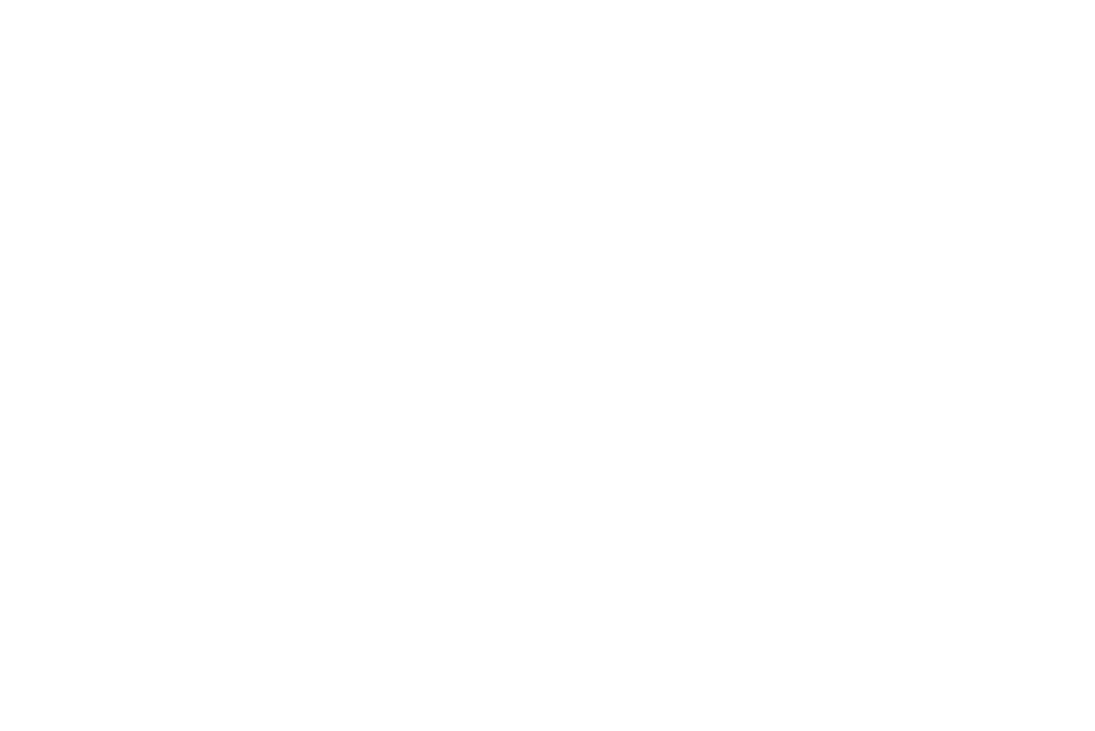 design your dreamshoot.png