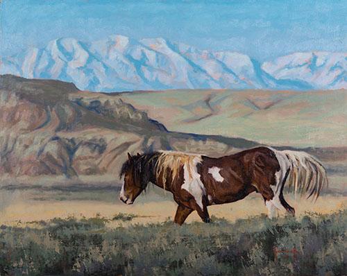 Bighorn Mustang (Sold)