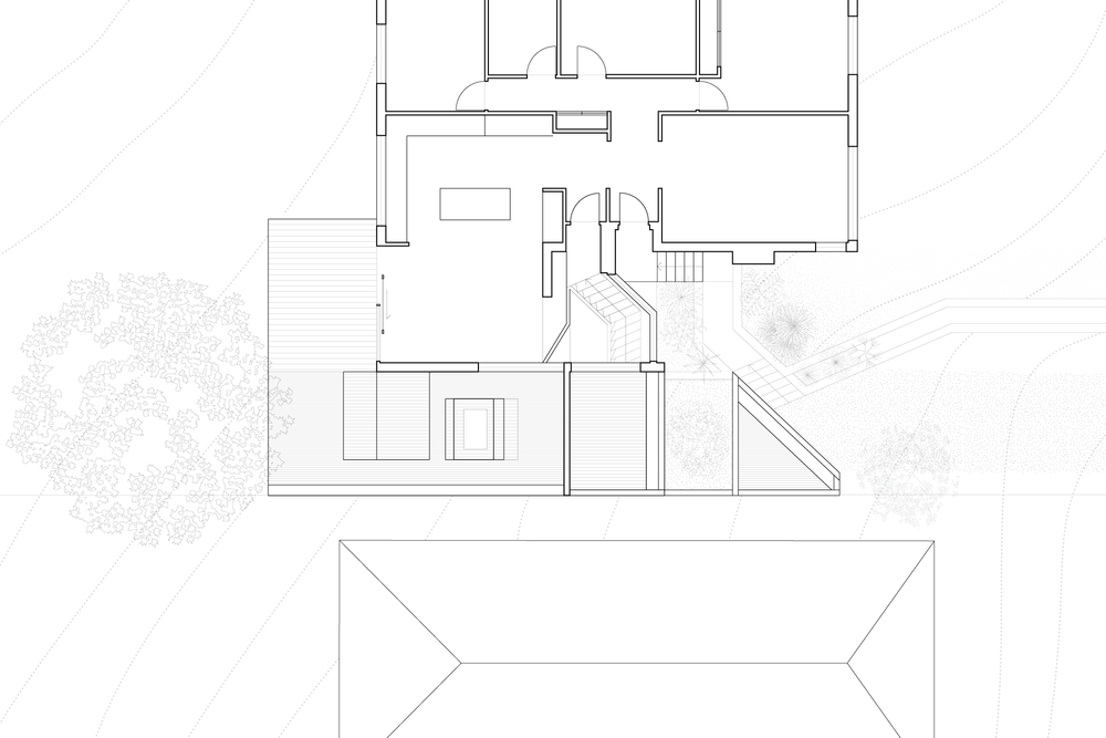 info | images |  model