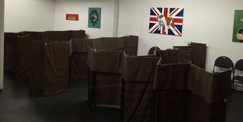 This is how the classroom looks during our Cranky Canine class - each dog and 2-handler team has their own private suite.