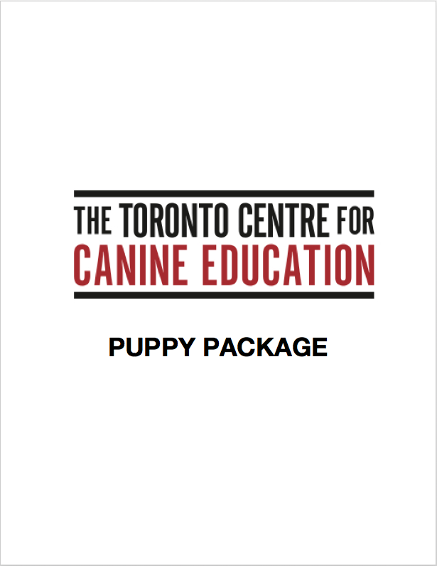 Click here to download your Puppy Package which contains valuable information on all things puppy!