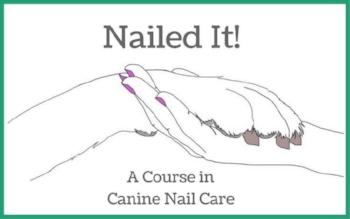 nailedit_logo.jpg