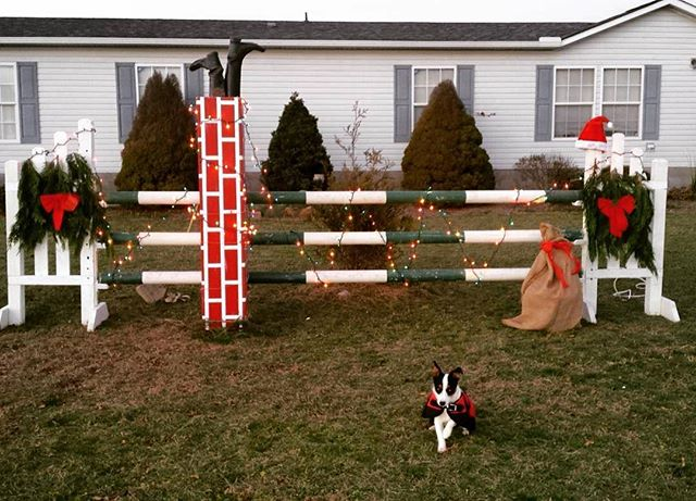 Our friend and jump maker @reholly has the best #christmasdecorations 🎅🏼🌲🐴