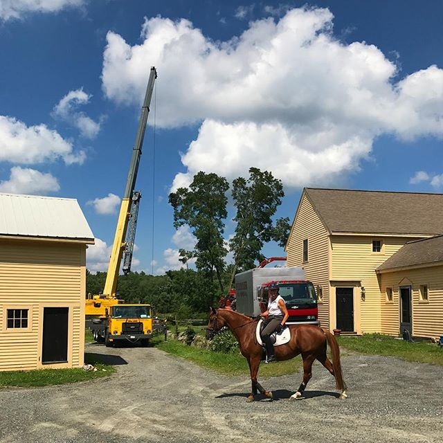 Never a dull moment at EDF! Today we finally got the wreckage from the micro burst/lightening storm we had a few weeks ago cleared up. Heavy machinery and large cranes mean plenty of training opportunities, but Laura was not at all fazed. #DressageHorse