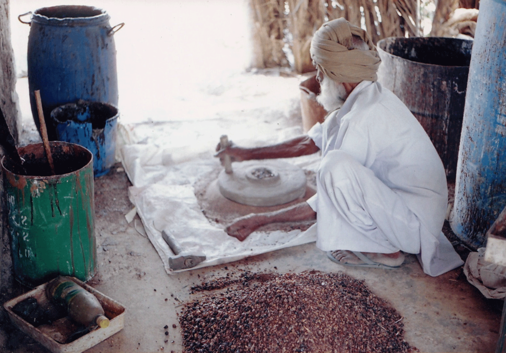 Gum extracted from the Acacia plant is ground and forms one of the raw materials used in the printing process