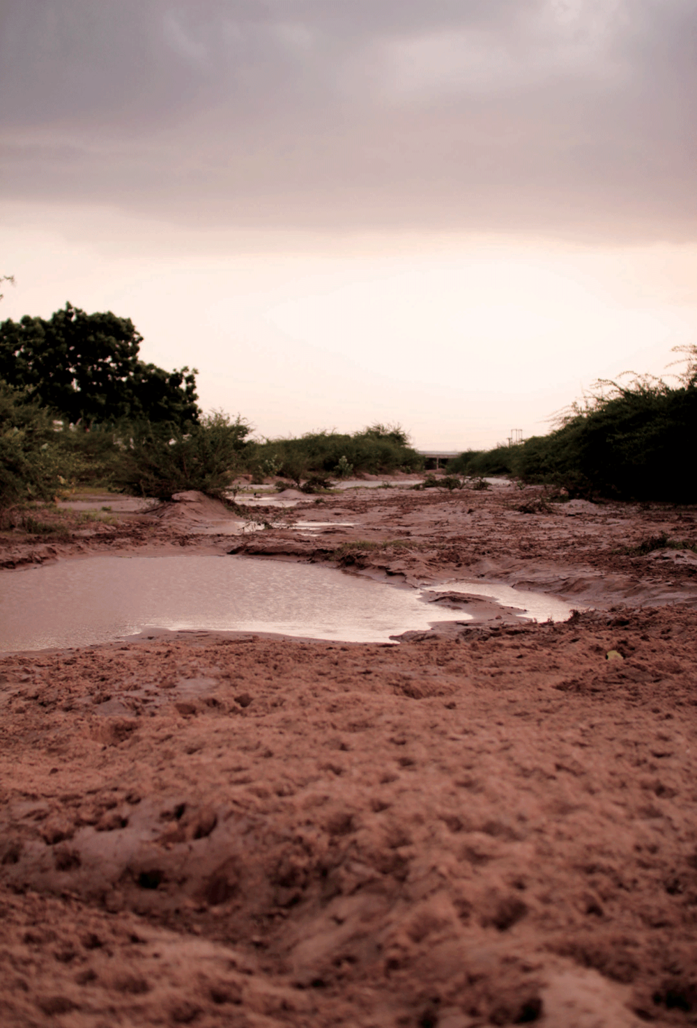 River Saran, Dhamadka, 2013