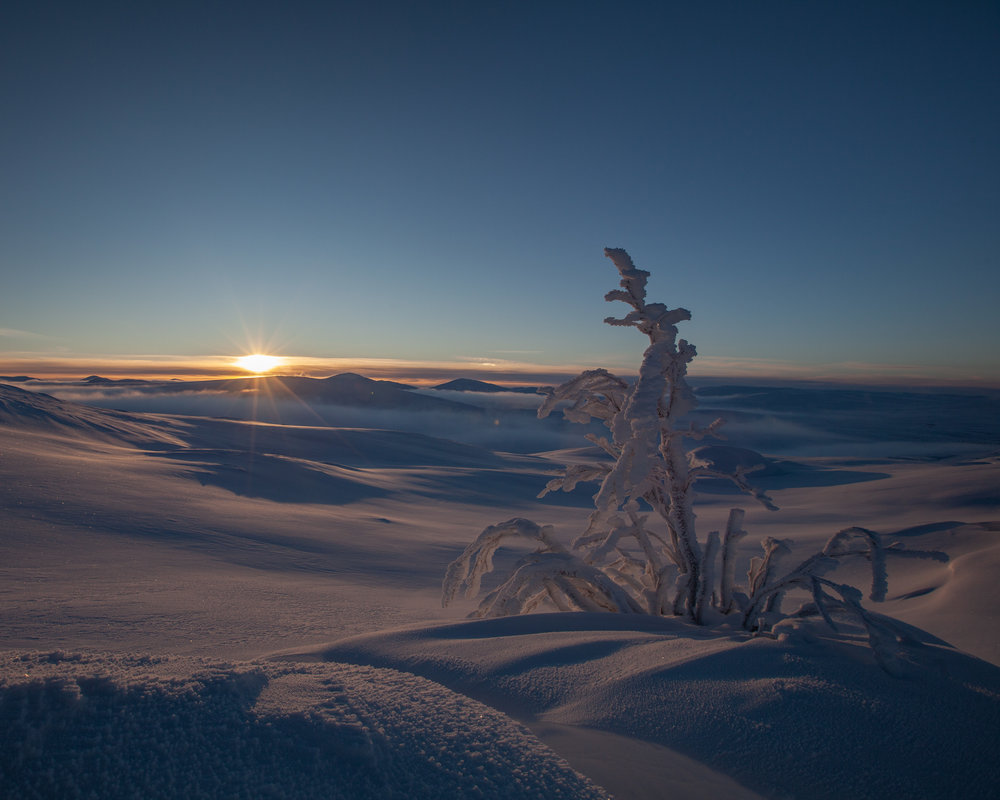 Fra Urdalsfjellet, mot Lurusneisa og Finnhuva