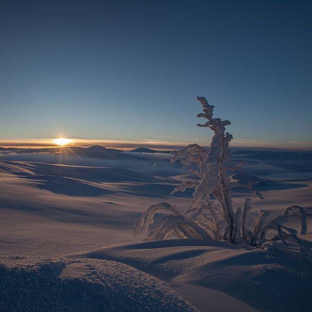 Med ønsker om en god jul og et godt nytt år! #fjellstyreneilierne  #fjellstyrene #lierne
