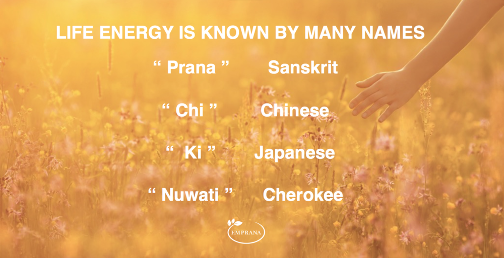 Different names to describe the life energy that keeps us alive and healthy