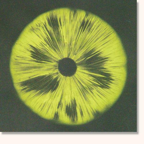 psychadelic-green-on-black.jpg