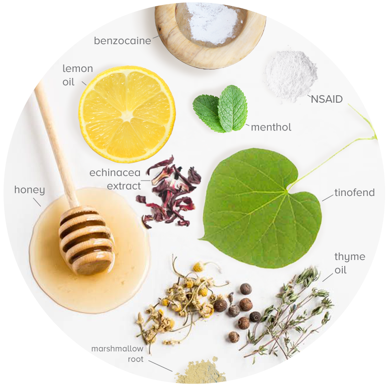 The Food Innovation Nexus Herbal Botanical Medicine