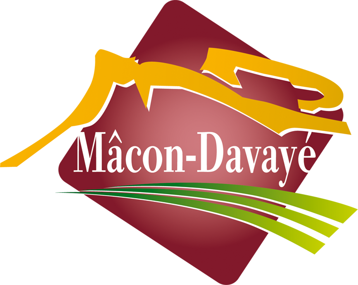logo DAVAYE.png
