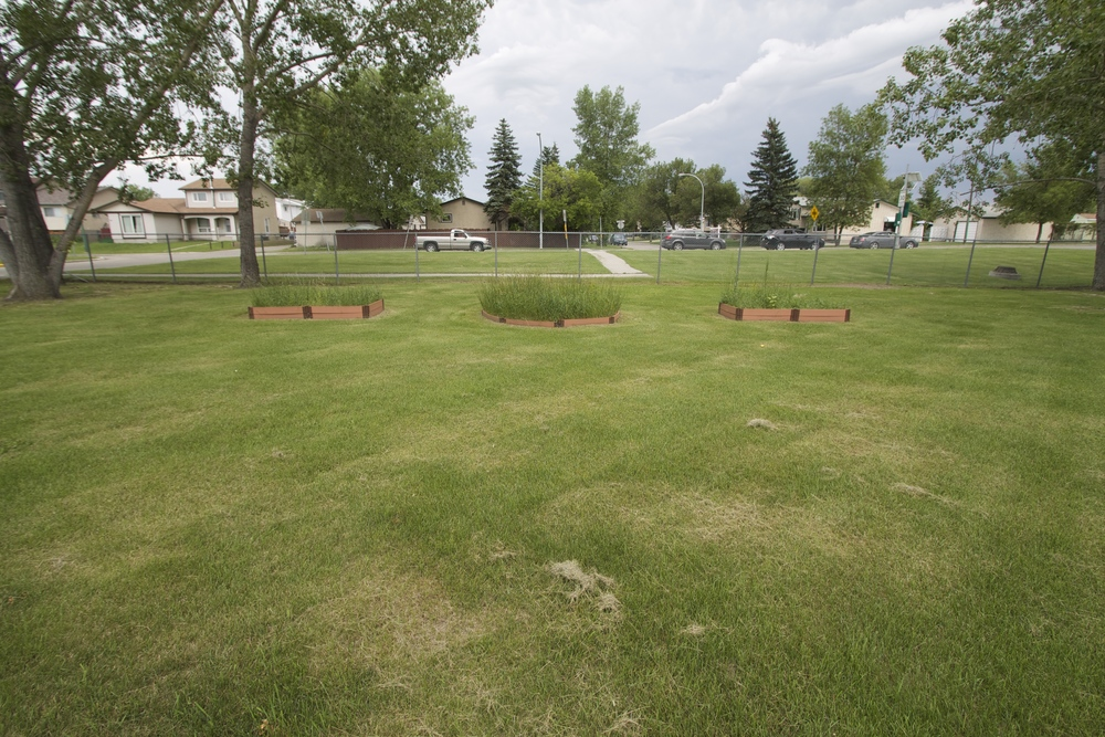 bernie-wolfe-school-landscaping