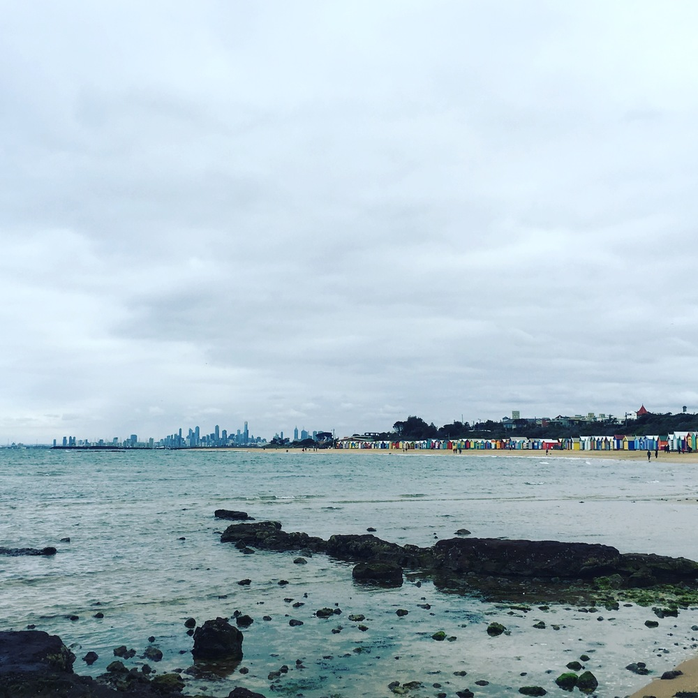The bathing boxes and Melbourne skyline