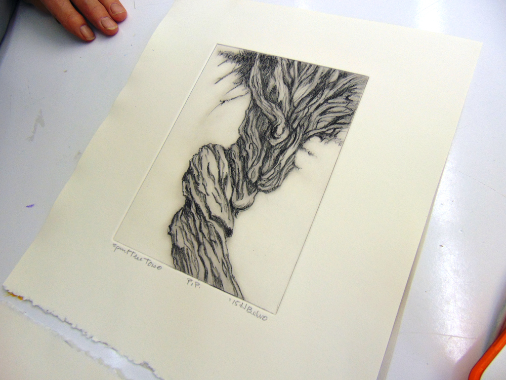 Belvo with Witch Tree etching
