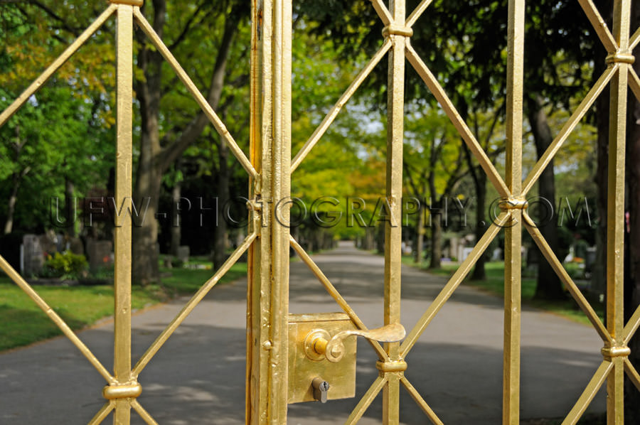 Beautiful golden iron gate in front of a park lane Stock Image