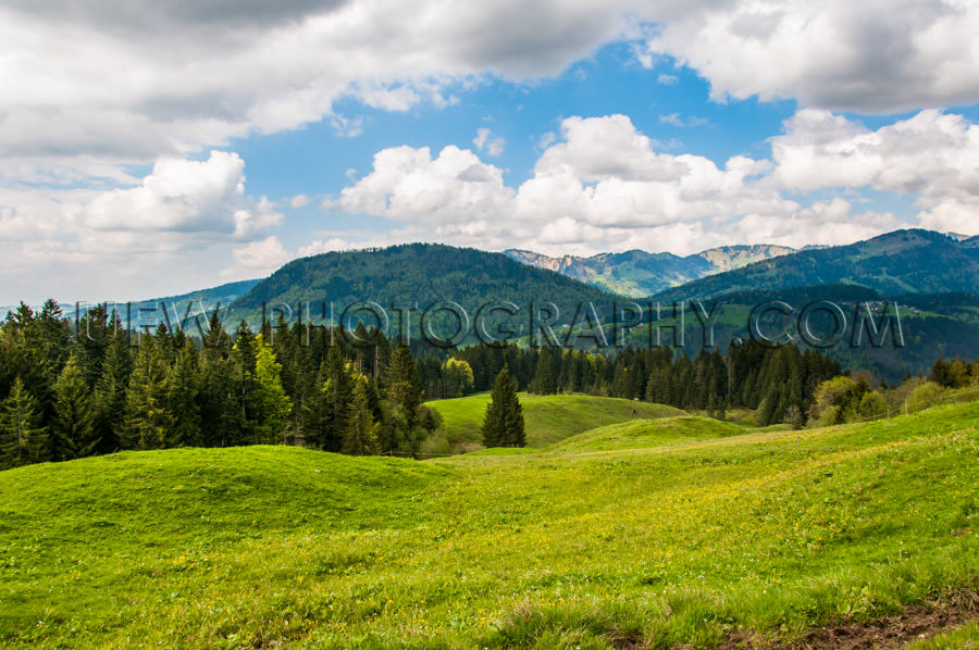 Beautiful alpine panorama landscape pasture mountain range Stock