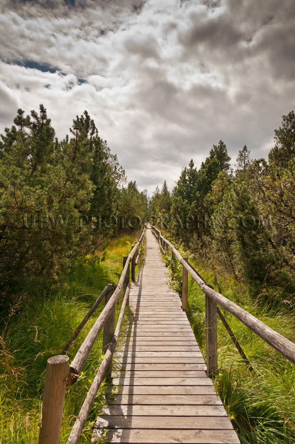 Wooden walkway in a nature reserve under cloudy sky Stock Image