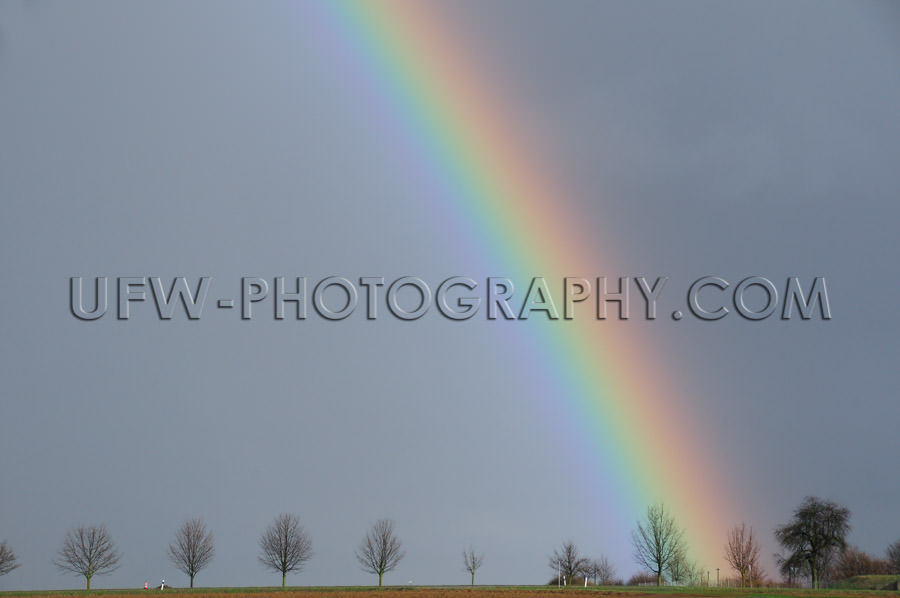 Rainbow against dark gray rainy sky vivid color trees Stock Imag