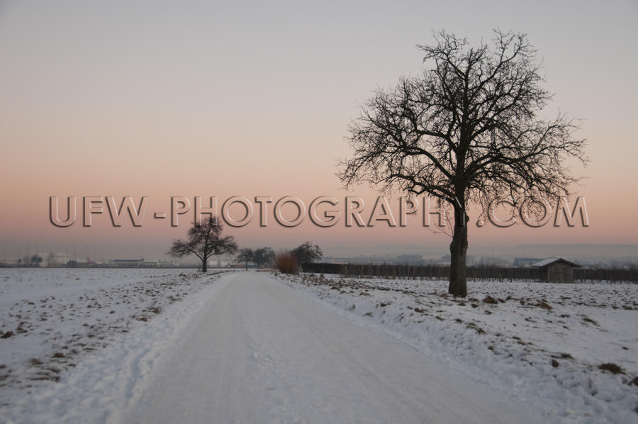 Beautiful winter scene snowy country track tree orange sunset su