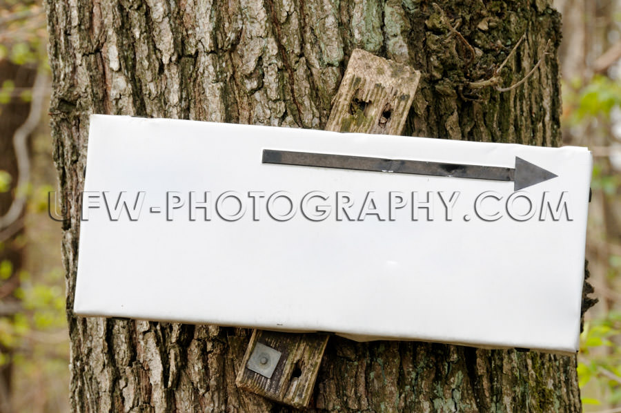 Blank white hiking sign black arrow attached tree Stock Image