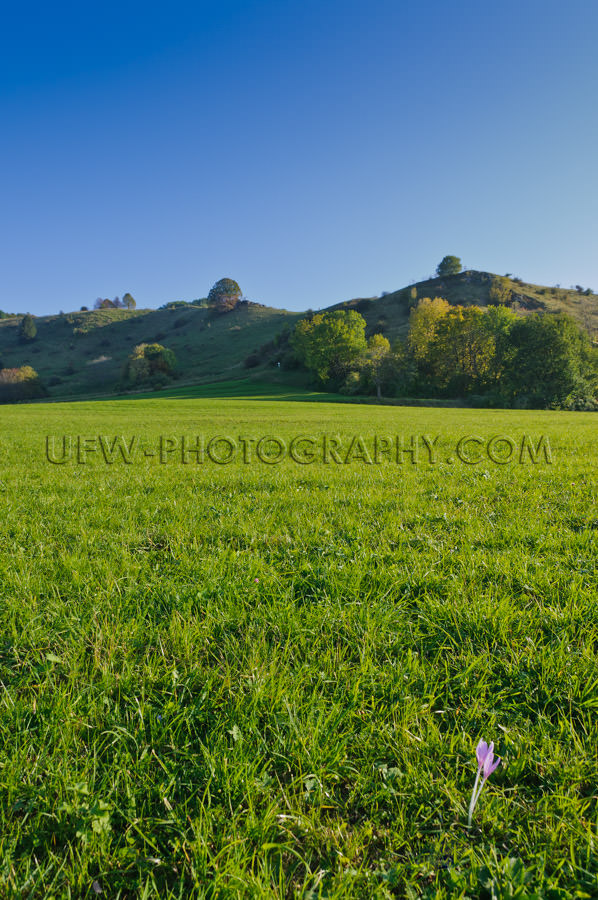 Hilly Landscape in autumn, against blue Sky- Stock Image