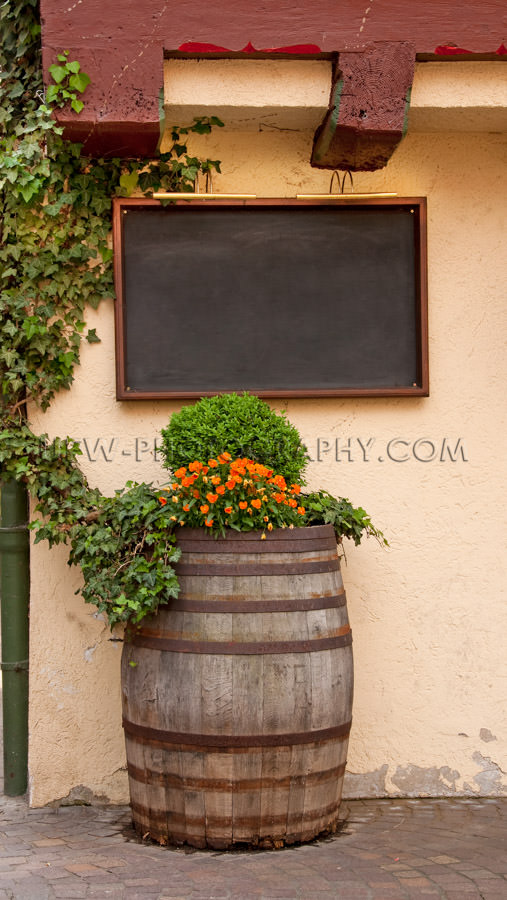 Blank menu board old wine barrel idyllic flowers outdoors Stock