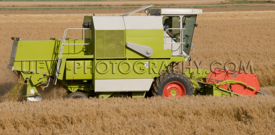 Combine harvester reaping machine working field agriculture Stoc