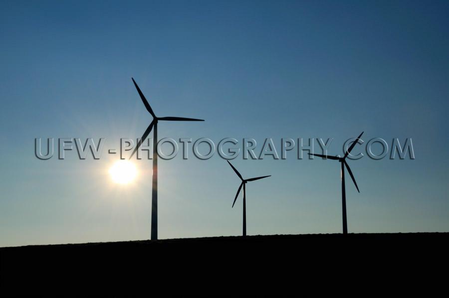 Three Wind turbine silhouettes, sun, dark blue sky, copy space -